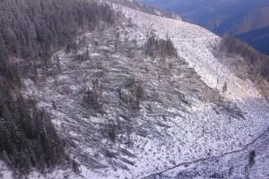 Vetrová kalamita Nižné Šulkovo 2017